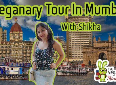Vegan tour to mumbai, India