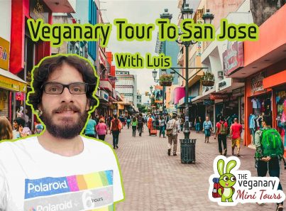 Vegan tour in san jose costa rica